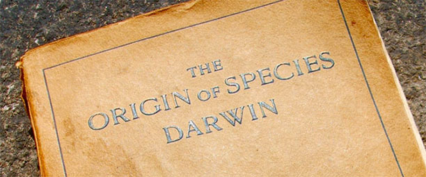 Special Theory of the evolution - Darwin