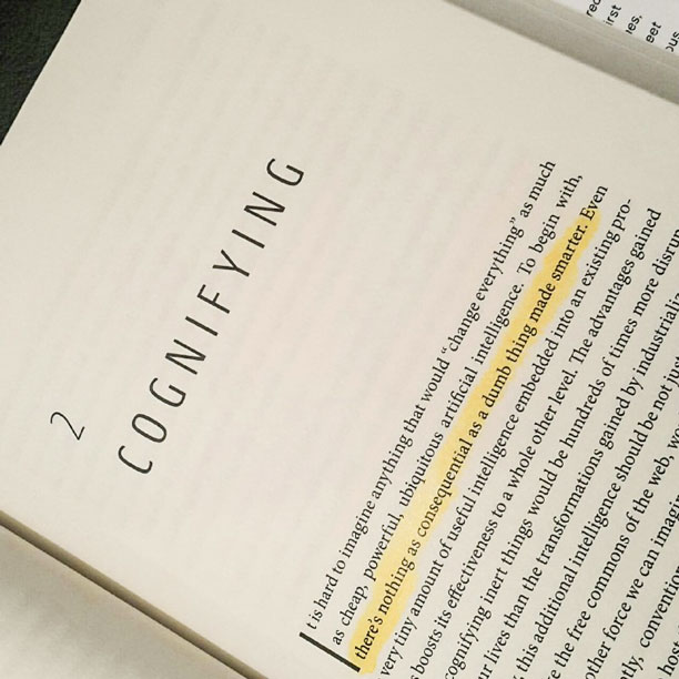 Kevin Kelly - Cognifying - Chapter 2 - Quotations - The Inevitable